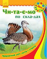 Моя Україна. Читаємо по складах: Тваринний світ лугів і степів, фото 1