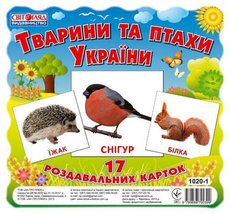 Тварини та птахи України. 17 роздавальних карток. Ранок Світогляд, фото 2