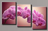 Картина модульная HolstArt Розовая орхидея 4 67*109,5см 3 модуля арт.HAT-179