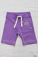 Бриджи фиолетовые с цветочками (74 см.) Wenice 8699035803186
