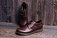 Мужские кожаные туфли Kristan brown коричневые