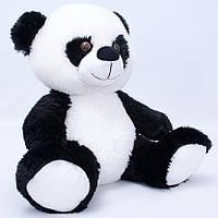 Медведь  020