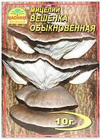Мицелий гриба Вешенка Обыкновенная, 10 г