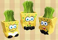 Травянчик Sponge Bob - ОПТ