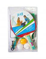 Набор для настольного тенниса с сеткой BT-PPS-0047