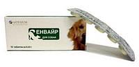 """Таблетки антигельминтные """"Енвайр"""" для собак, 10 таблеток"""