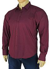 Чоловіча сорочка Negredo 0320 B