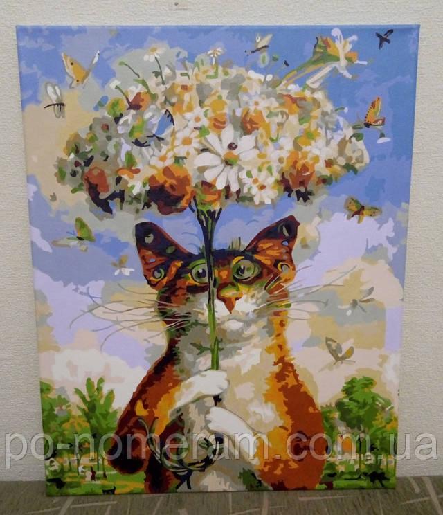 Картина по номерам кот с ромашкой