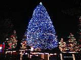 Светодиодная гирлянда для украшения деревьев ЛУЧ-3 (Каучук), фото 10