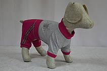 Комбинезон для собак Спорт, фото 2