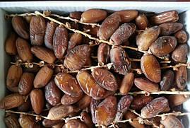 Финики натуральные на ветке 1 кг