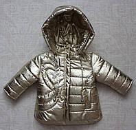 Куртка на девочку детская демисезонная 1-3 года, фото 1