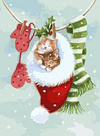 Картина по номерам Спящие котики (KHO2495) 30 х 40 см [Без коробки]