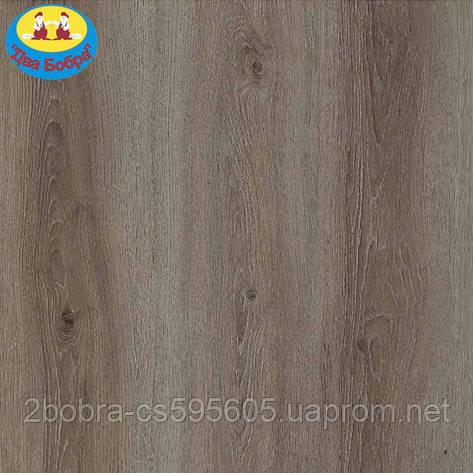 Ламинат Kastamonu Floorpan Orange 32 класс с фаской FP953 Дуб Европейский, фото 2