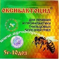 Гнильцовые болезни пчёл