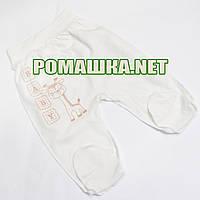 Ползунки (штанишки) на широкой резинке р. 62 ткань КУЛИР 100% тонкий хлопок ТМ Алекс 3166 Бежевый А