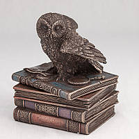 Шкатулка Veronese Сова на книгах 12 см 75511, фото 1
