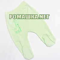 Ползунки (штанишки) на широкой резинке р. 68 ткань КУЛИР 100% тонкий хлопок ТМ Алекс 3166 Зеленый А