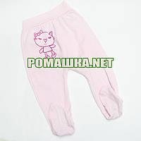 Ползунки (штанишки) на широкой резинке р. 74 ткань КУЛИР 100% тонкий хлопок ТМ Алекс 3166 Розовый В