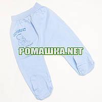 Ползунки (штанишки) на широкой резинке р. 80 ткань КУЛИР 100% тонкий хлопок ТМ Авекс 3166 Голубой В