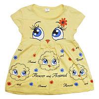Платье трикотаж  2-5лет , арт.1385