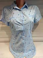Женская рубашка,блуза с коротким рукавом  р. S,M,L,XL,XXL