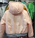 Куртка весенняя для девочки Бомбер Размеры 36- 42, фото 2