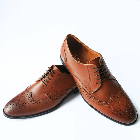 Купить мужские туфли фабрики Икос : кожаные туфли броги, с перфорацией, коричневого цвета
