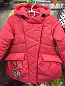 """Детская демисезонная куртка на девочку """"Совушки"""". Размеры 26 -32, фото 5"""