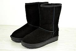 Модные мужские зимние сапоги Ugg