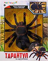 Паук на радиоуправлении ТАРАНТУЛ (светятся глаза, 30 см) KI-3020