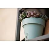 Вазон для квітів Latina 5,6 літрів, фото 6