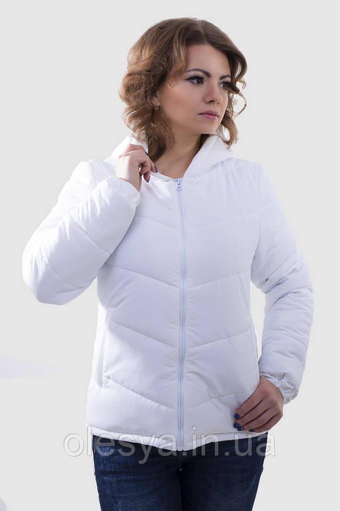 e232647de9df Куртка женская демисезонная 41, (3цв), демисезонная женская куртка,  короткая куртка осень