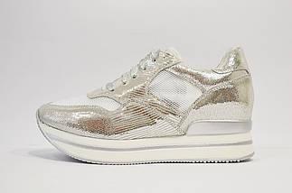 Серебристые кроссовки на платформе Lonza, фото 3