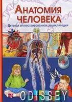 Анатомия человека. Детская иллюстрированная энциклопедия. Гуиди В. Владис