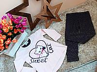 Копія Костюм для девочек Оптом и в розницу Турция 1,5-5 лет Little cat