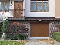 Гаражные ворота DOORHAN RSD01 2300х2000, фото 1