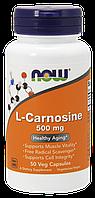 Л-Карнозин / NOW - L-Carnosine 500mg (50 caps), фото 1