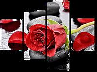 Модульная картина Красная роза на камнях 120*93,5 см