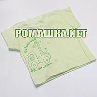 Детская кофточка р. 56 с коротким рукавом ткань КУЛИР 100% тонкий хлопок ТМ Алекс 3174 Зеленый А