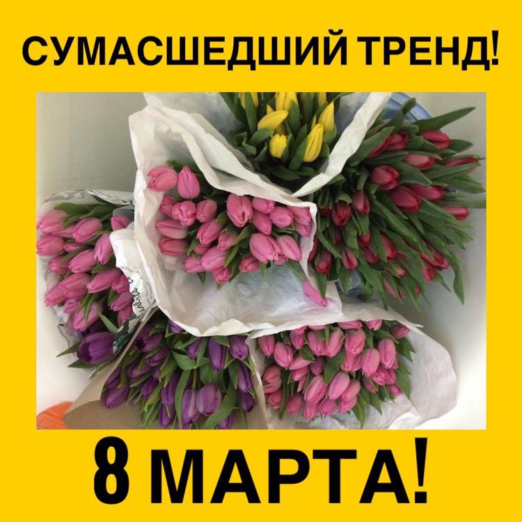 prodazha-tsveti-na-8-marta-optom-dnepropetrovsk