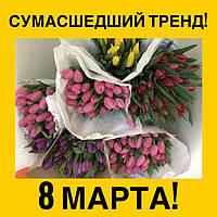 Тюльпаны оптом в Днепре и по всей Украине