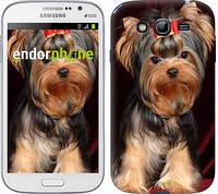 """Чехол на Samsung Galaxy Grand Neo I9060 Йоркширский терьер """"929c-112-1852"""""""