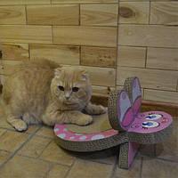 Croci C6020317 драпак Бабочка для кота 25 x 38 x 20 cm (картон)