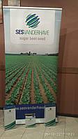 Семена сахарной свеклы / насіння цукрового буряка Хайленд -  Сесвандерхаве 100000 семян