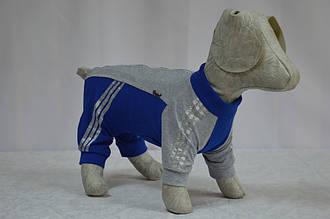 Комбінезон для собак Теніс