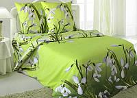 Двуспальное постельное белье Подснежники