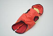 Жилет Трио с капюшоном для собак красный, фото 3