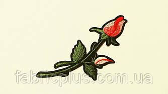 Аппликация (термо)  розы  большая