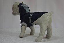 Жилет Турист для собак, фото 2